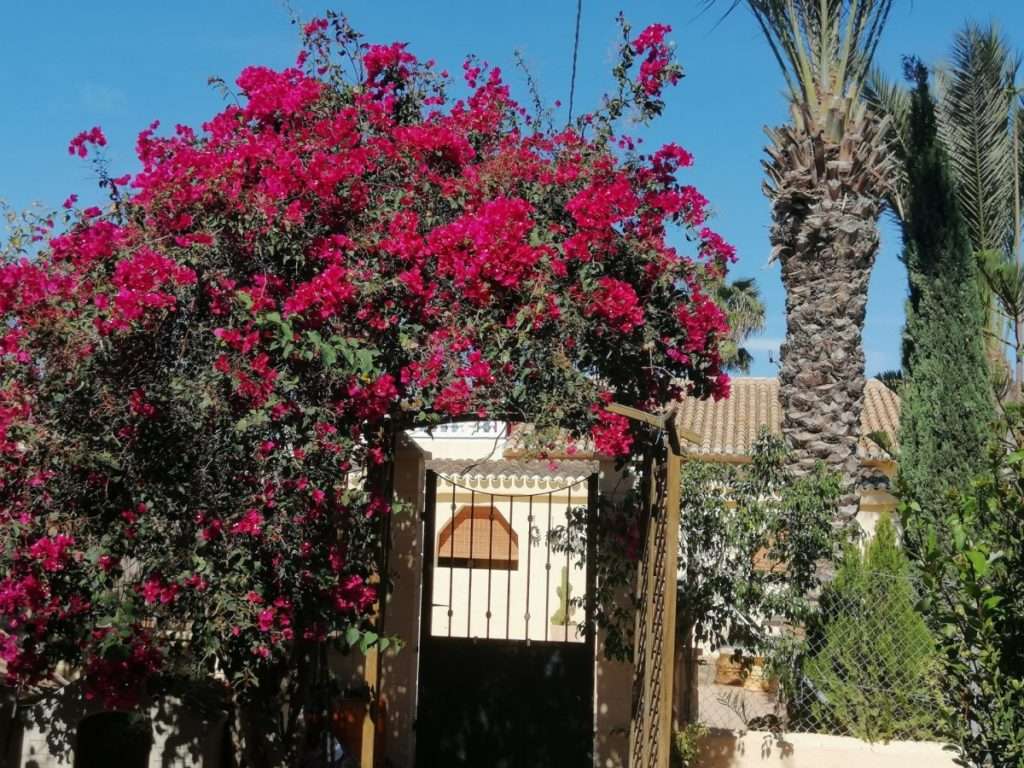 jardín villa Cartagena