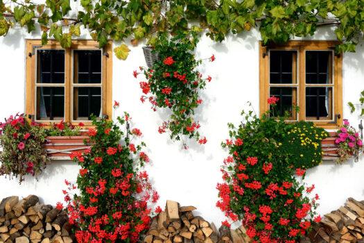 balcón floral